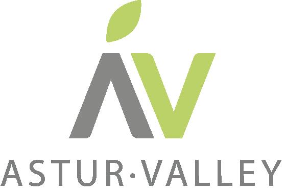 asturvalley_logo
