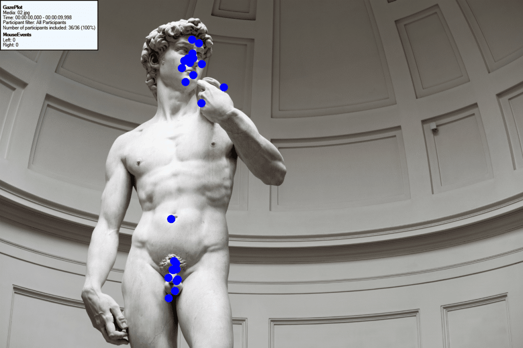 Bee Swarm from an eye tracking study with 30 users by TeaCup Lab of the masterpiece David by Michelangelo.